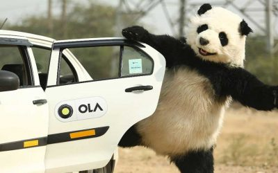 Ola suspends Foodpanda delivery and marketplace; executes mass lay-offs